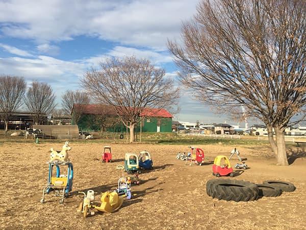 埼玉 日高 加藤牧場 Baffi 日高本店 子供用遊具