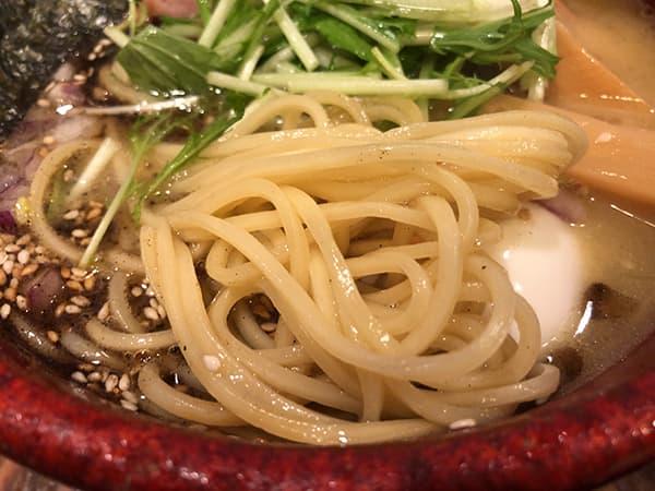 埼玉 狭山 麺屋たつみ 喜心 狭山店 麺