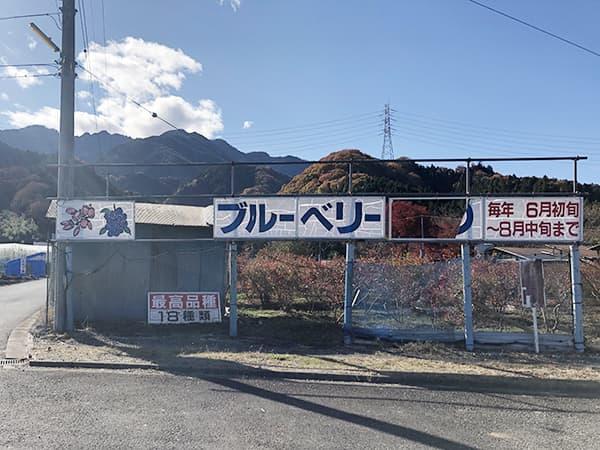埼玉 秩父 道の駅 あらかわ|ブルーベリー園