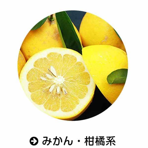 Amazon|みかん・柑橘類