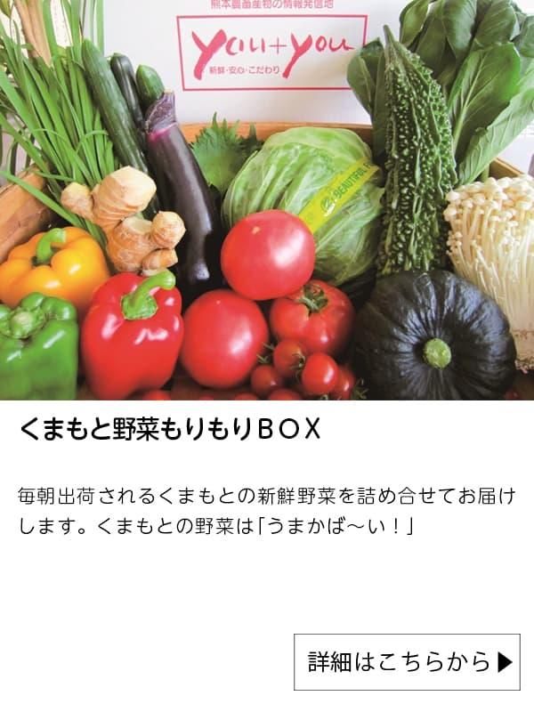 JAタウン|くまもと野菜もりもりBOX