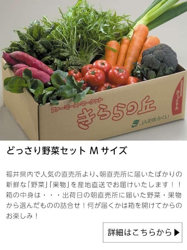 どっさり野菜セット Mサイズ|JAタウン