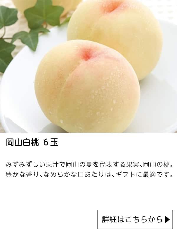JAタウン|岡山白桃 6玉