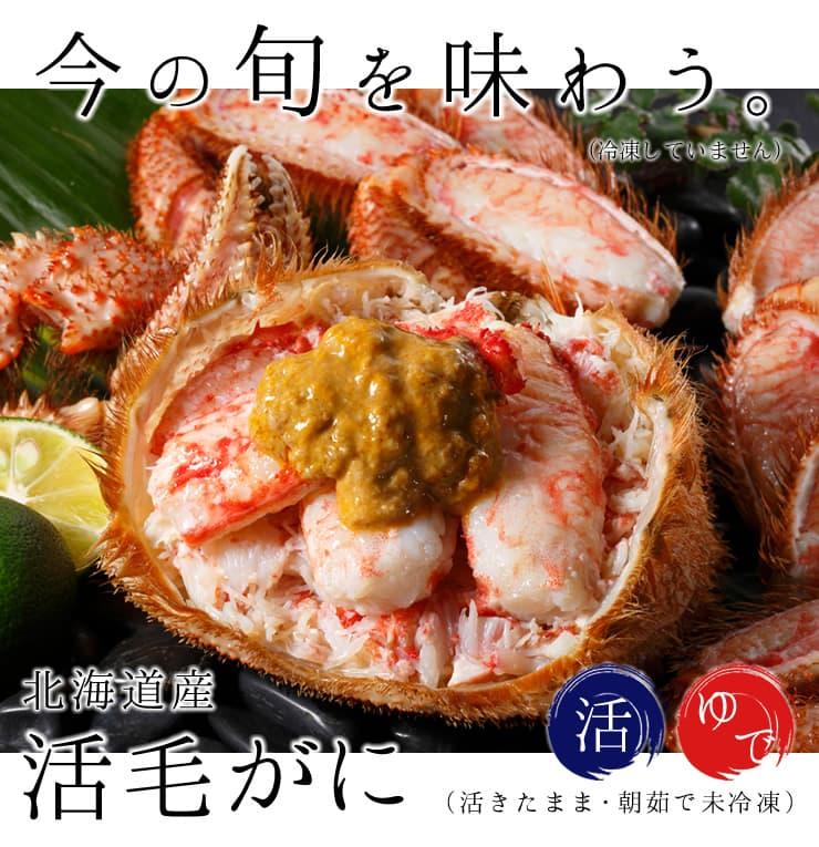 「蟹の匠」厳選!「活」毛ガニ