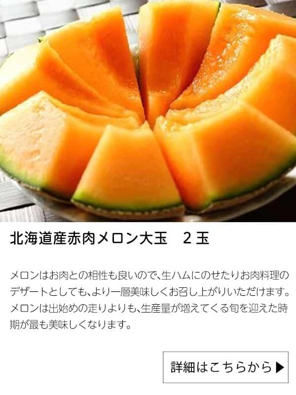 北海道産赤肉メロン大玉 2玉|さとふる