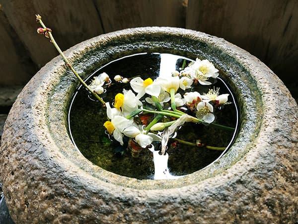 東京 亀有 吟八亭 やざ和 生花