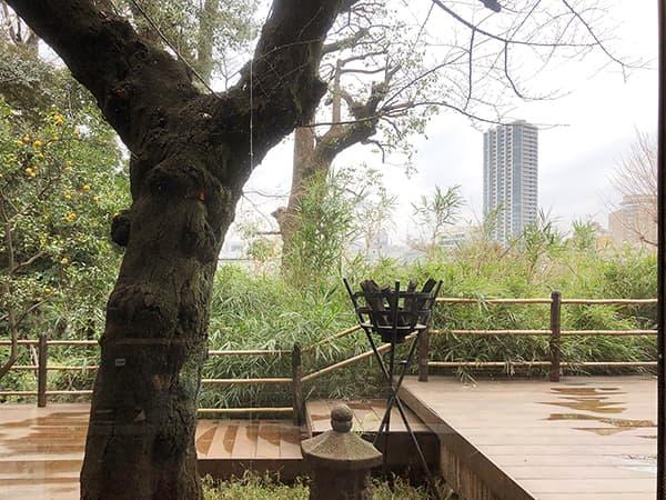 東京 上野 韻松亭|風景