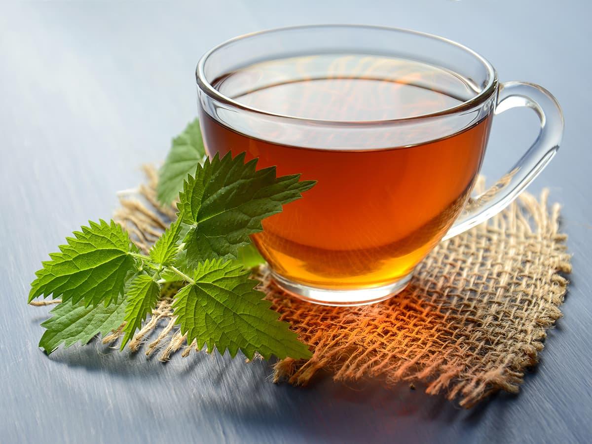 【2020 厳選 おいしいお茶 5選】世界各地のお茶や美味しいお茶の通販サイトをご紹介