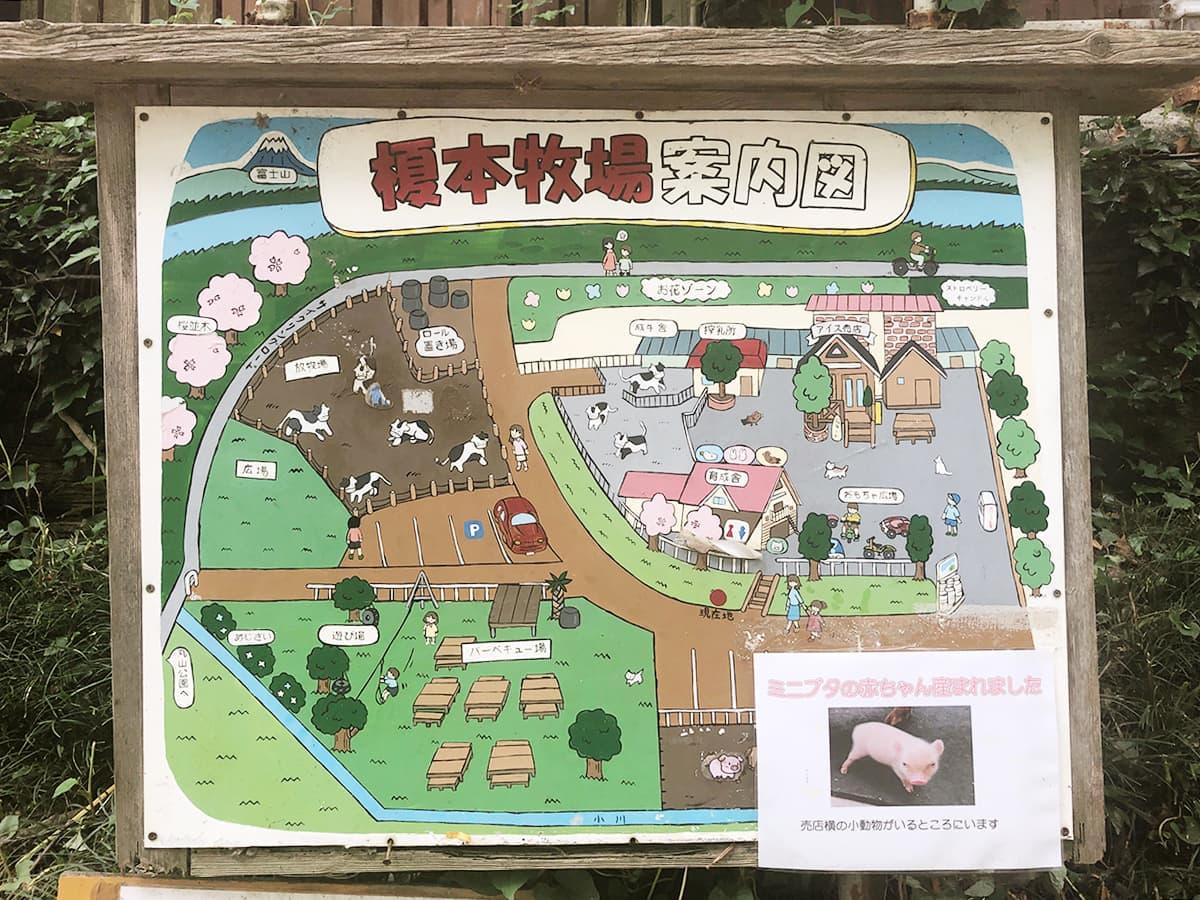埼玉 上尾 榎本牧場 フォルトゥーナ|案内図