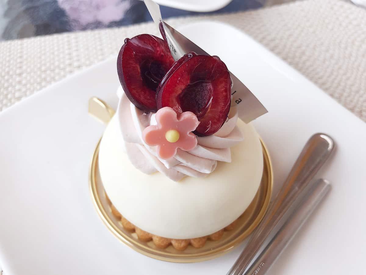 埼玉 志木 シンフラ (Shinfula)|レアチーズケーキ