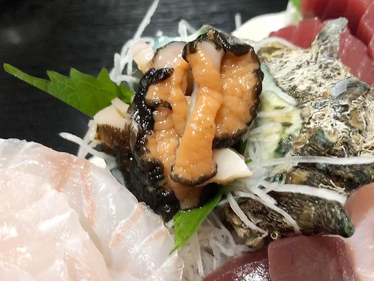 山形 鶴岡 堂道(どうみち)|つぶ貝