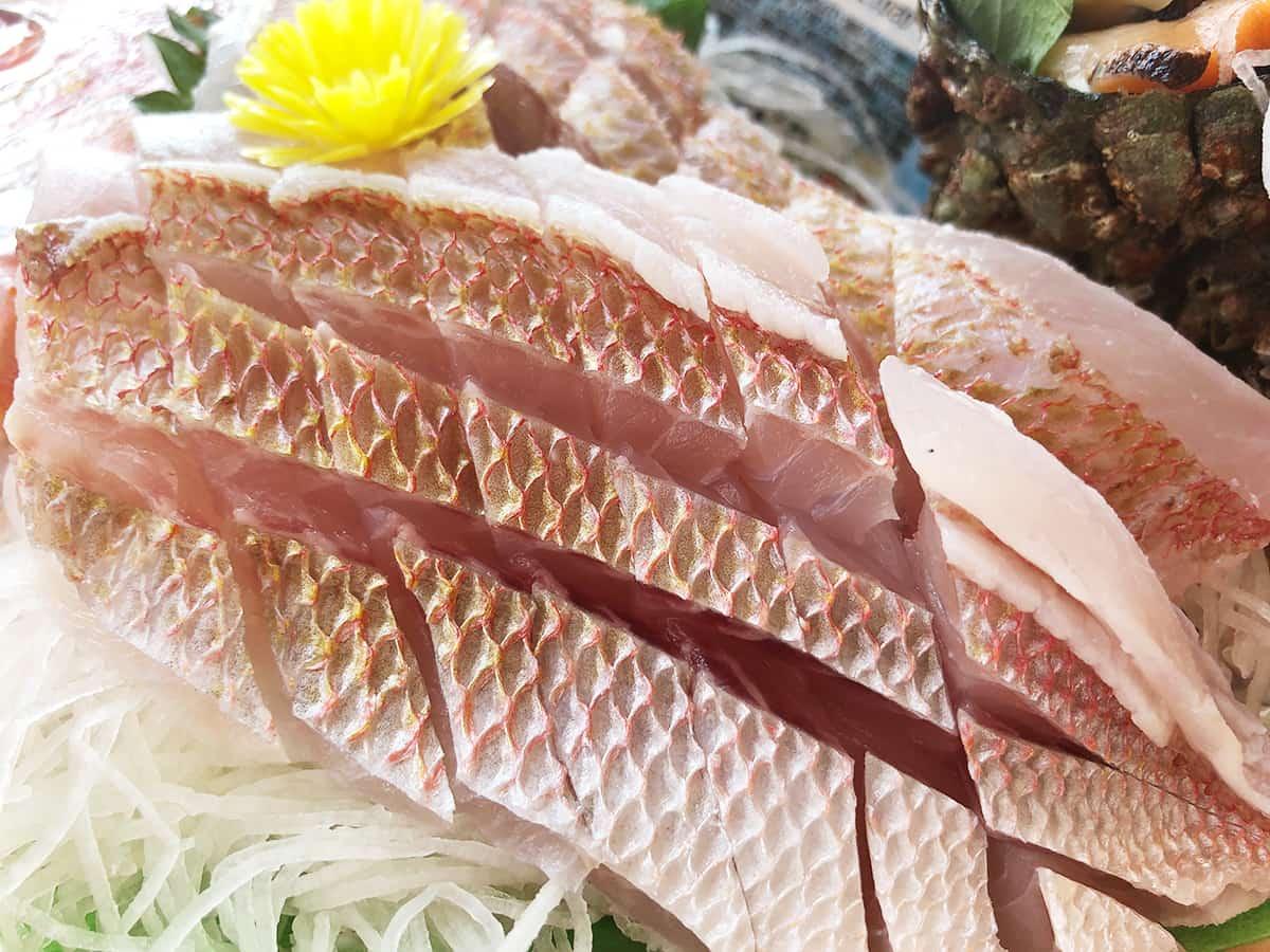 山形 酒田 菅原鮮魚|キンカラ鯛