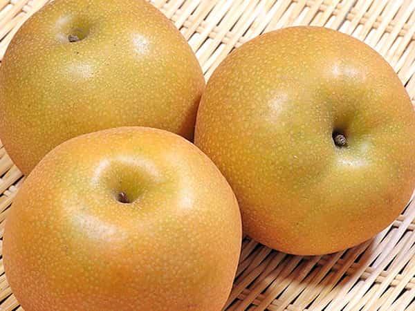 【2020 秋 厳選 おいしいフルーツ 5選】おいしいフルーツのオススメ通販サイトと人気商品をご紹介!!