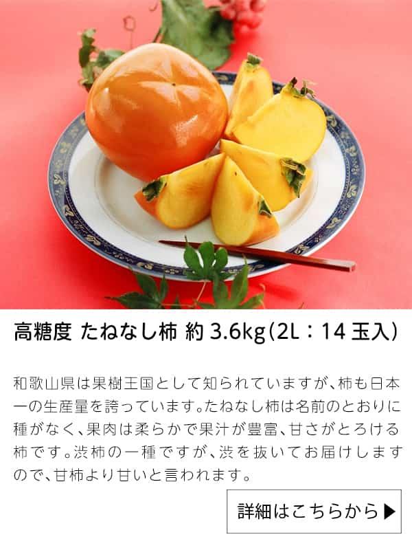 高糖度 たねなし柿 約3.6kg(2L:14玉入)|JAタウン
