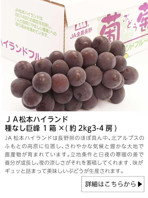 JA松本ハイランド種なし巨峰 1箱×(約2kg3-4房)クール便 9月10日以降順次発送|JAタウン