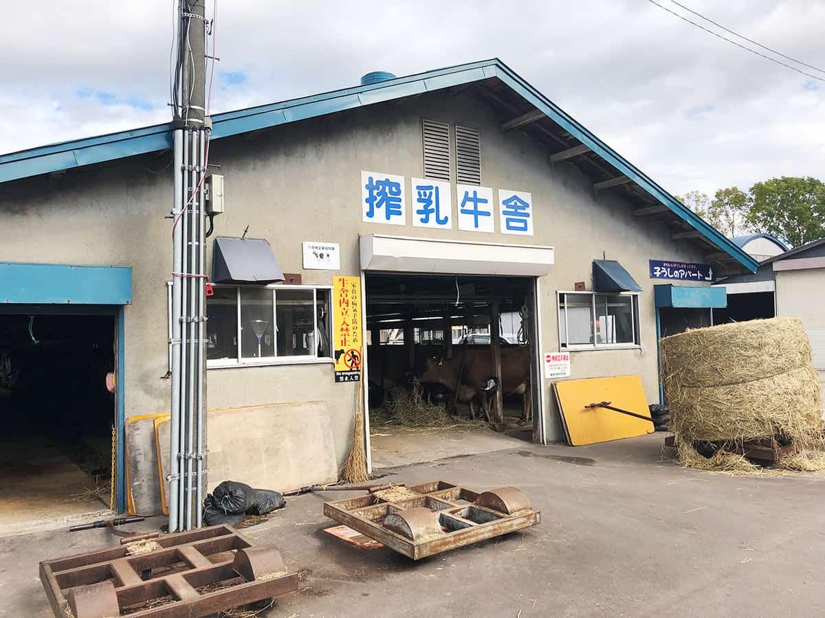 北海道 大沼 山川牧場ミルクプラン|搾乳牛舎