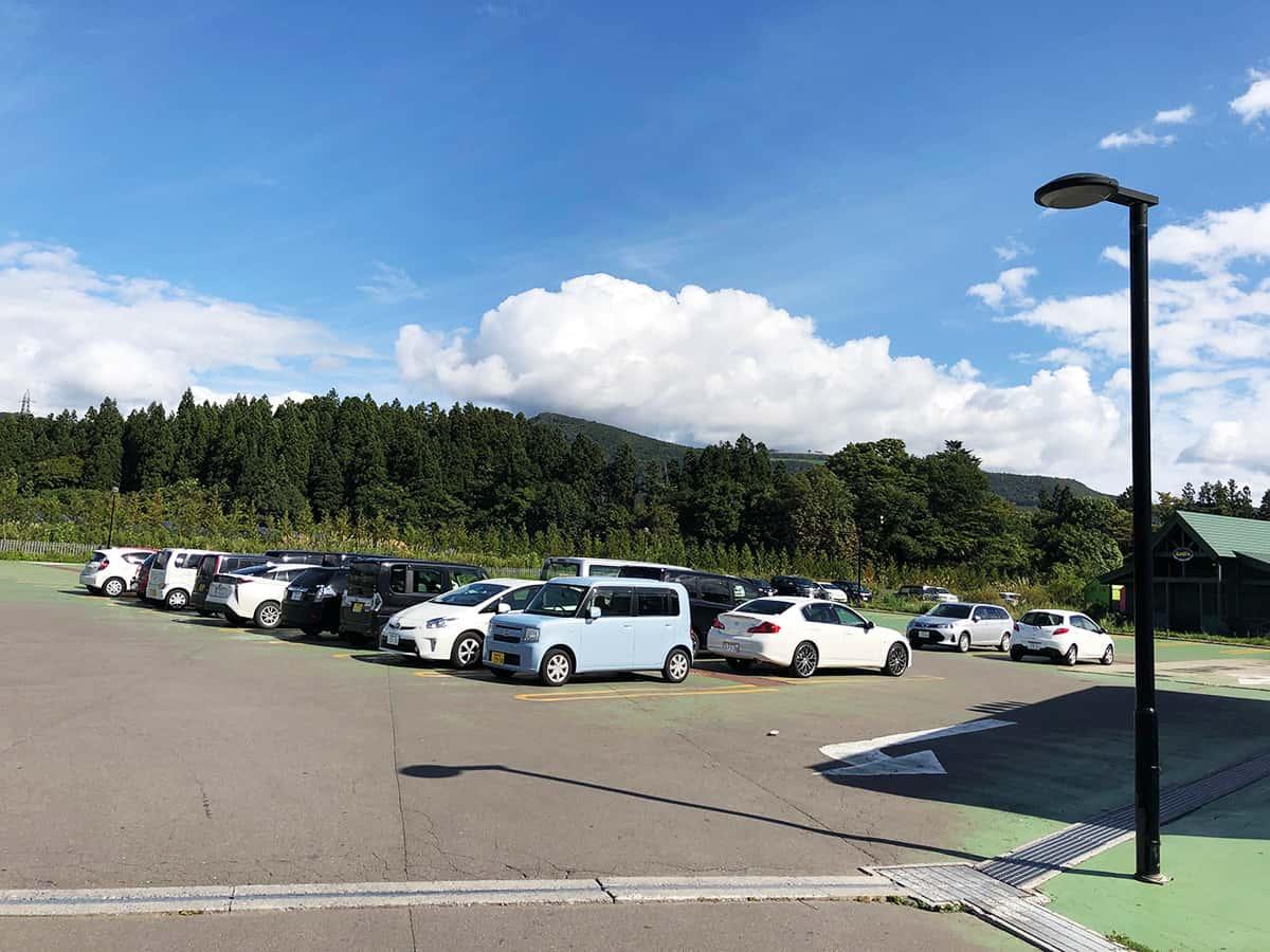 北海道 七飯 ラッキーピエロ 峠下総本店|駐車場