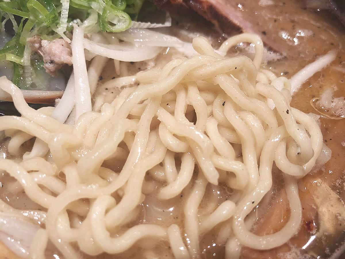 北海道 新千歳空港 札幌飛燕|麺