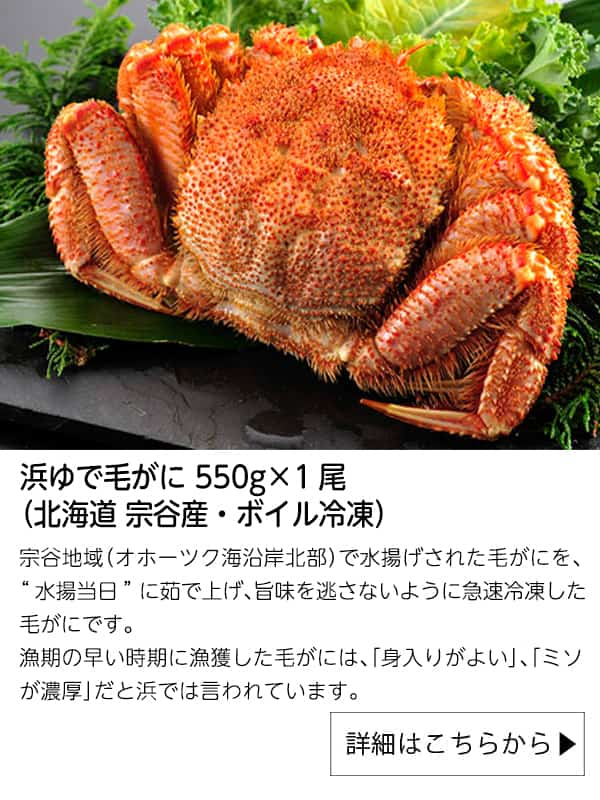 浜ゆで毛がに 550g×1尾(北海道 宗谷産・ボイル冷凍)|北海道ぎょれん