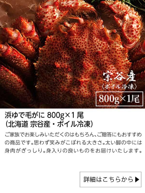 浜ゆで毛がに 800g×1尾(北海道 宗谷産・ボイル冷凍)|北海道ぎょれん