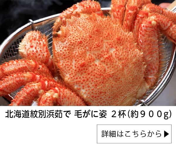 北海道紋別浜茹で 毛がに姿 2杯(約900g)|かに本舗
