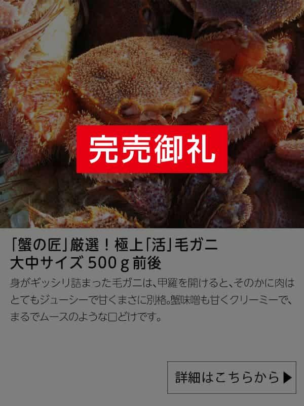 「蟹の匠」厳選!極上「活」毛ガニ 大中サイズ500g前後|北訓水産