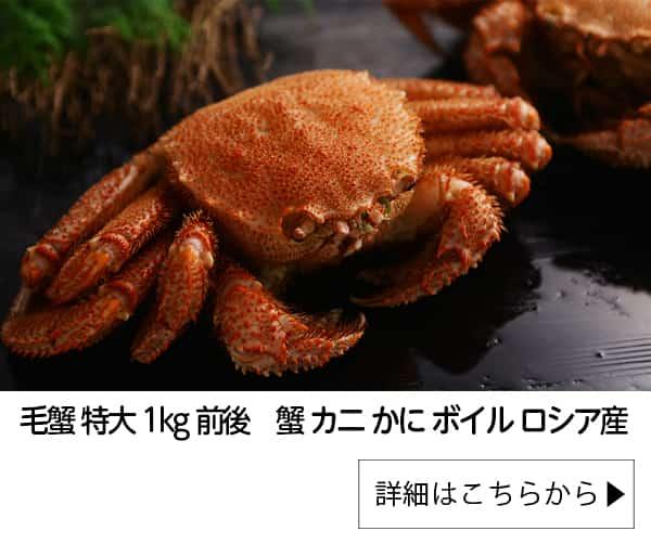 毛蟹 特大 1kg前後 蟹 カニ かに ボイル ロシア産|北国からの贈り物