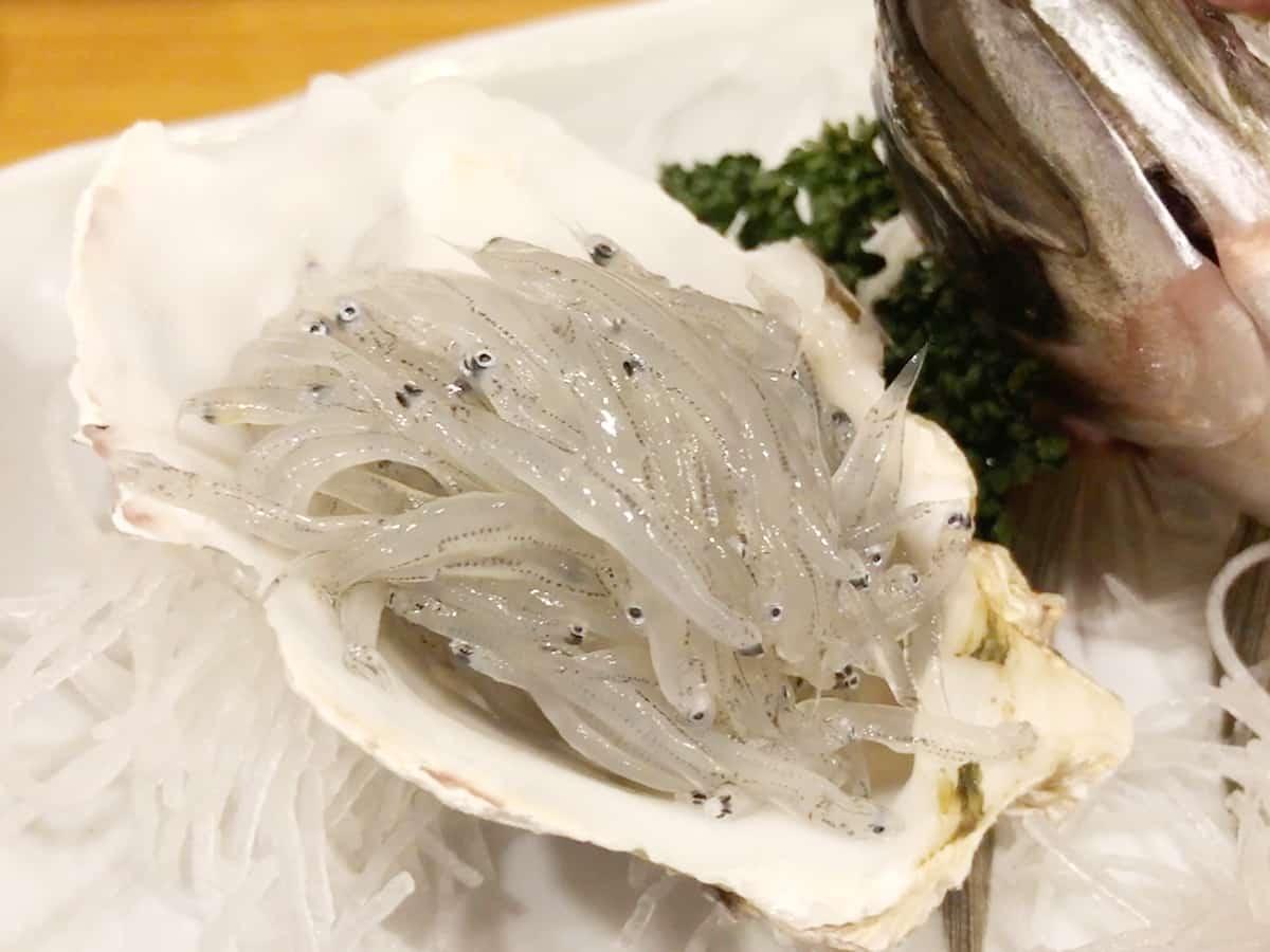 静岡 沼津 魚河岸 丸天 魚河岸店|白魚